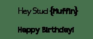 StudMuffinSentiment